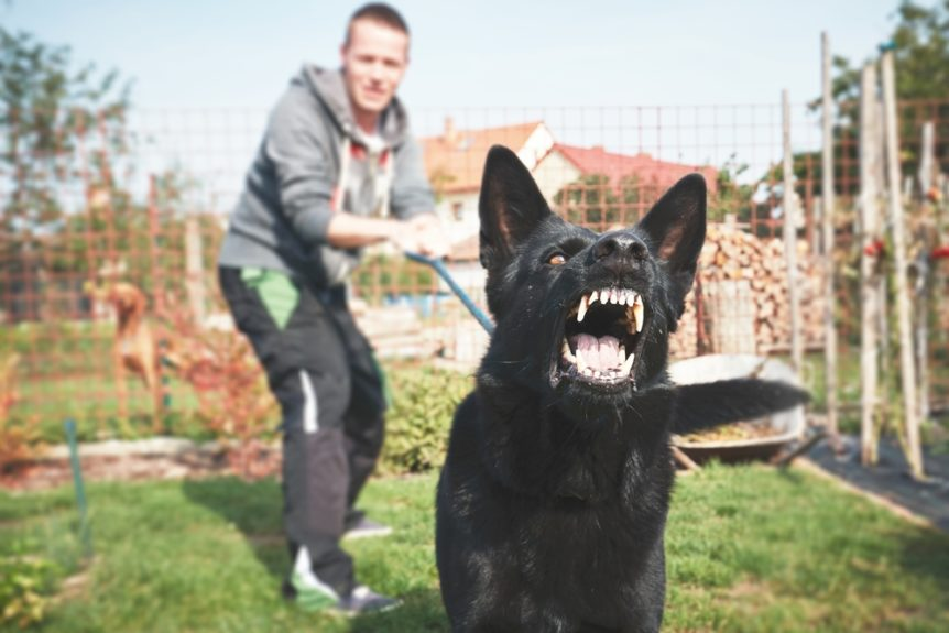 Do I Have A Dog Bite Personal Injury Case? | Green Law Firm